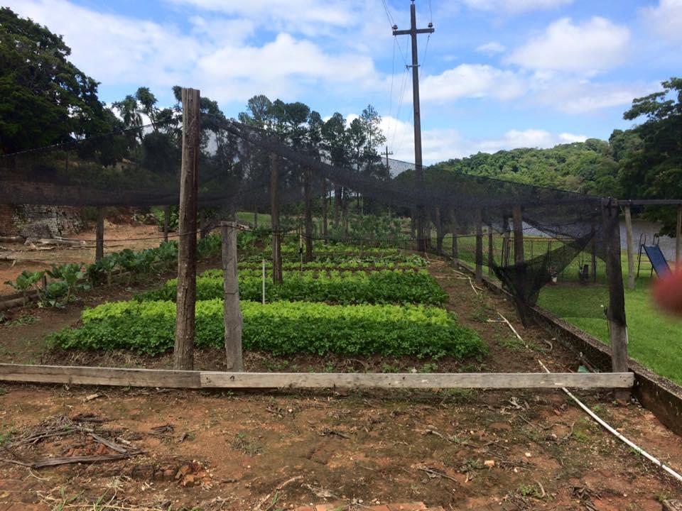 Primeira parada do passeio: a horta que abastece o restaurante do local