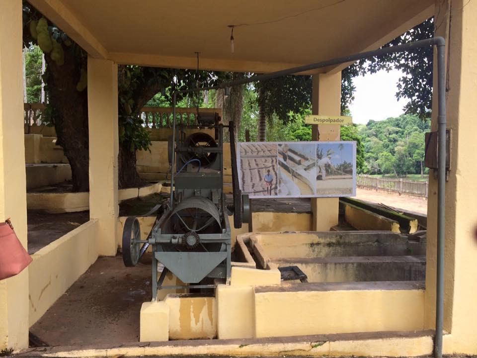Uma das máquinas antigas, utilizadas na produção do café