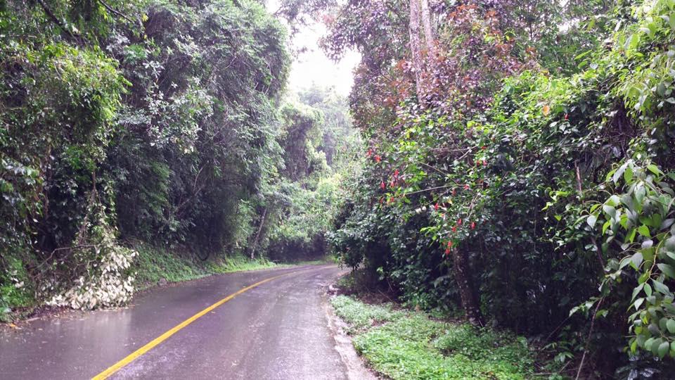 Até a estrada é um charme! Gosto tanto, que vou até em dias de chuva!