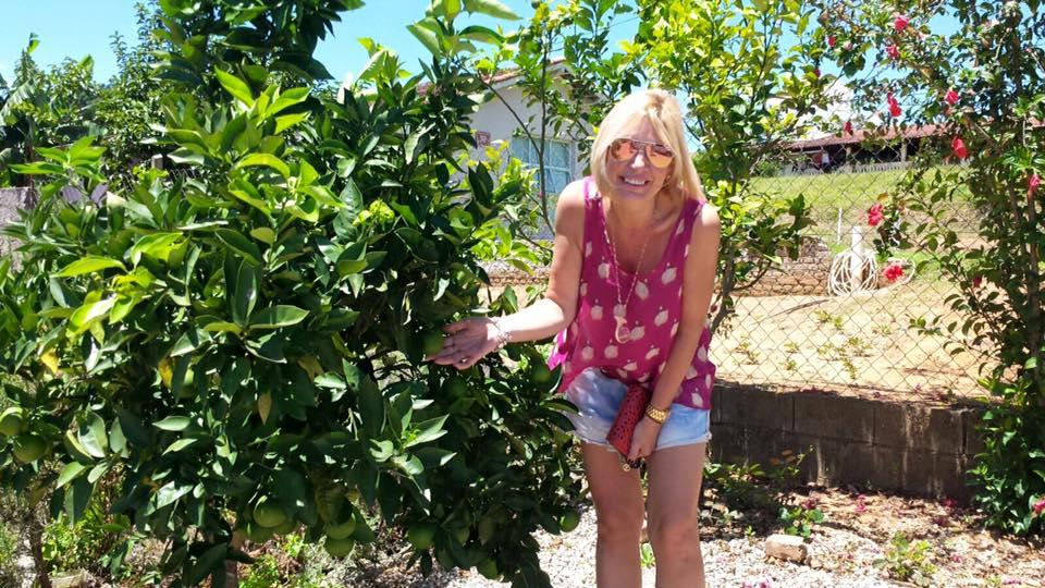 O charme das árvores frutíferas no quintal do armazém