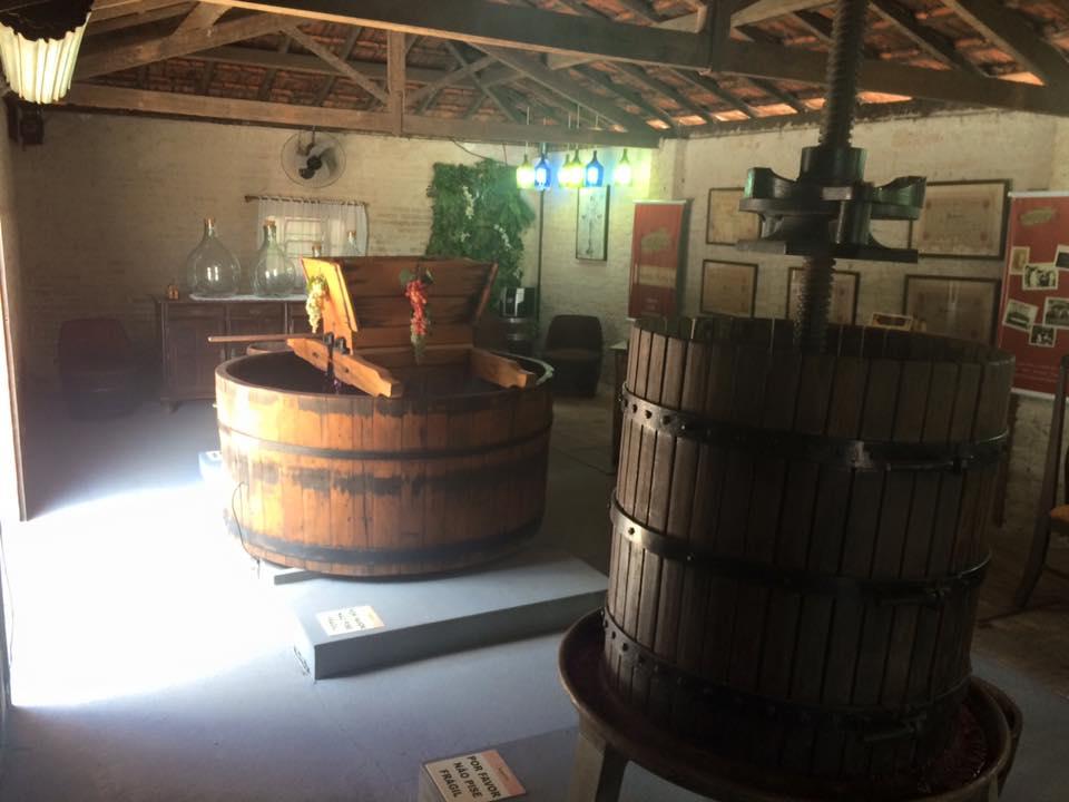 Um pouco do pequeno museu do vinho