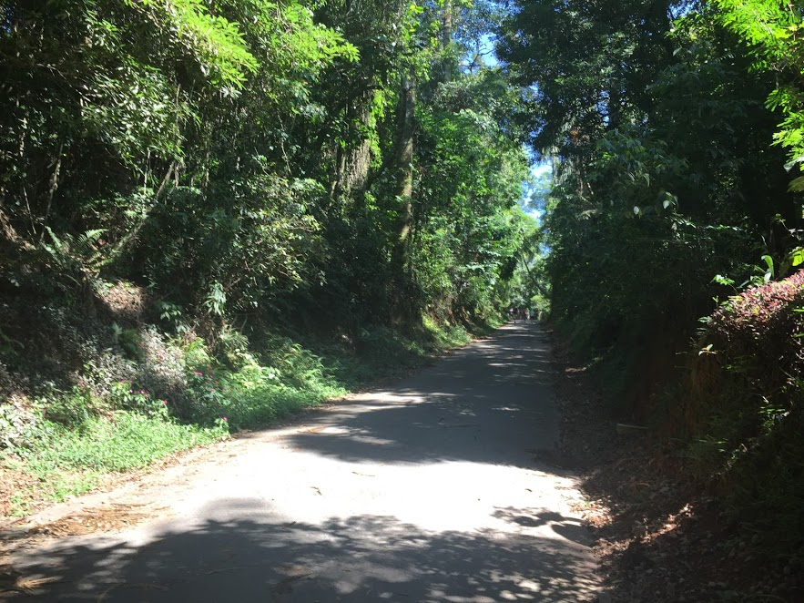O começo da Trilha Pedra Grande, asfaltada, com algumas subidas no caminho