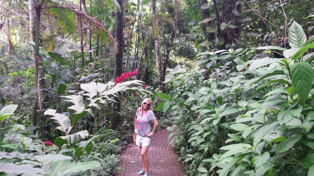 O acesso às praias é feito por pequenas trilhas dentro do condomínio, cercadas de verde