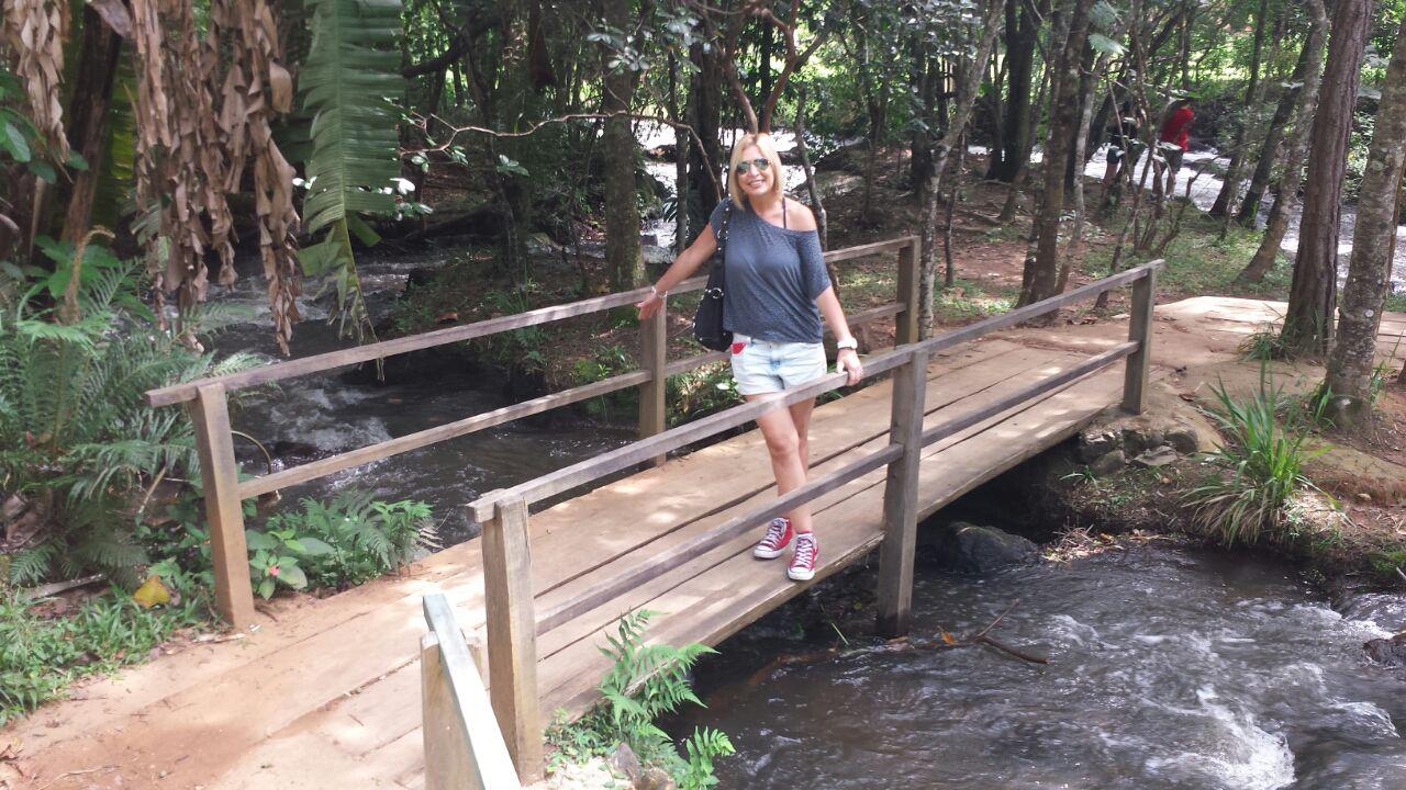 Várias trilhas e pontes para percorrer e apreciar a natureza